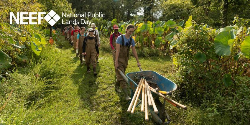 Volunteers working on National Public LAnds