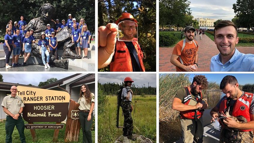 Photo collage showing International Forestry Fellows.