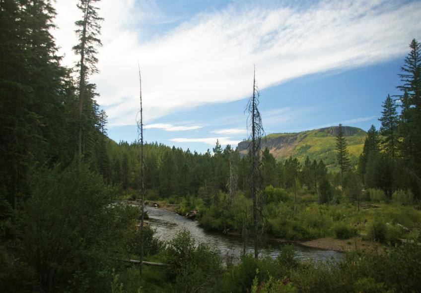 The Deschutes Collaborative Forest Project brings together a diverse group of stakeholders to improve forest health.