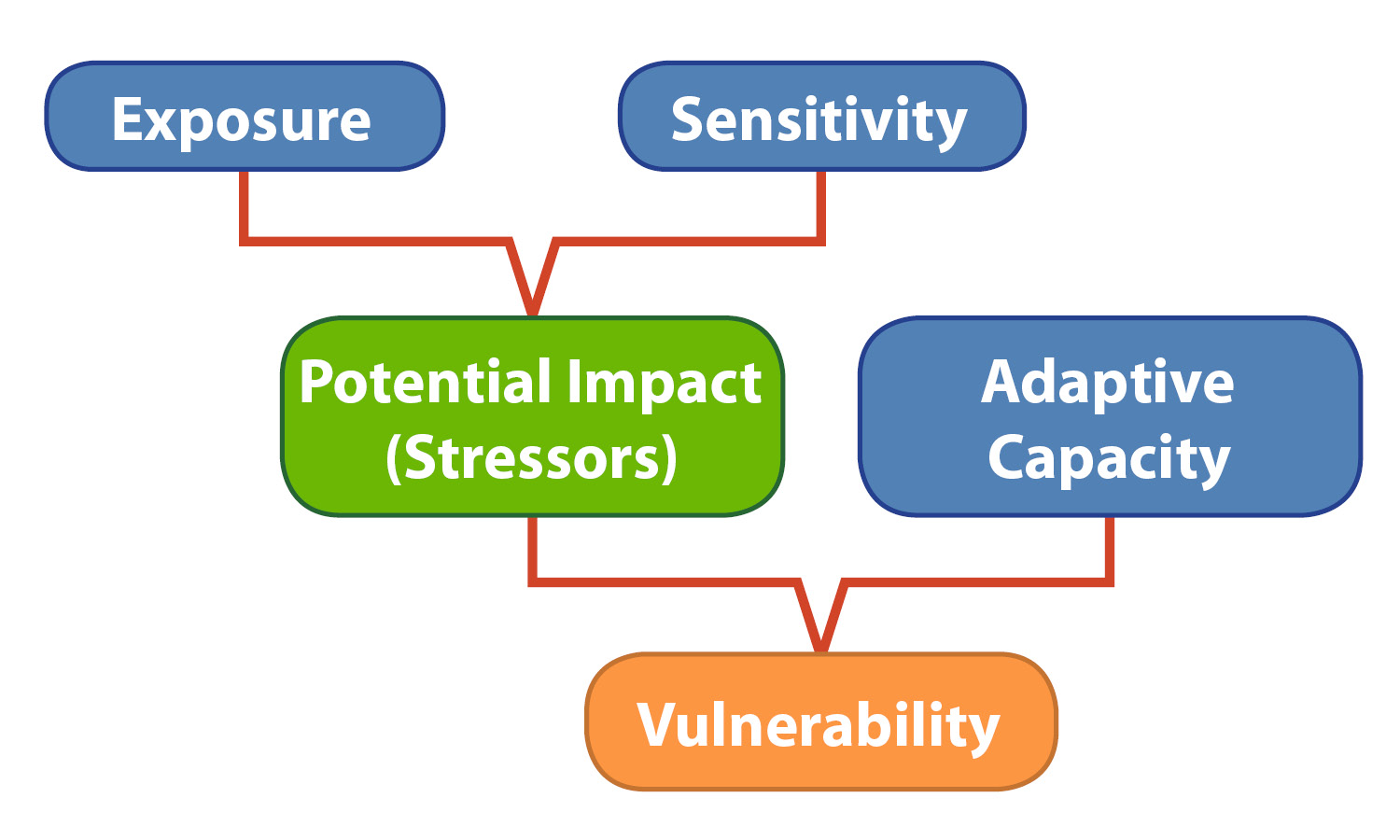 A flow chart showing the relationship between exposure, sensitivity, potential impact (stressors), adaptive capacity and vulnerability
