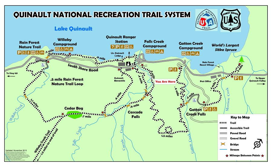 Forest Service - Quinault National Recreation Trail System Vicinity on